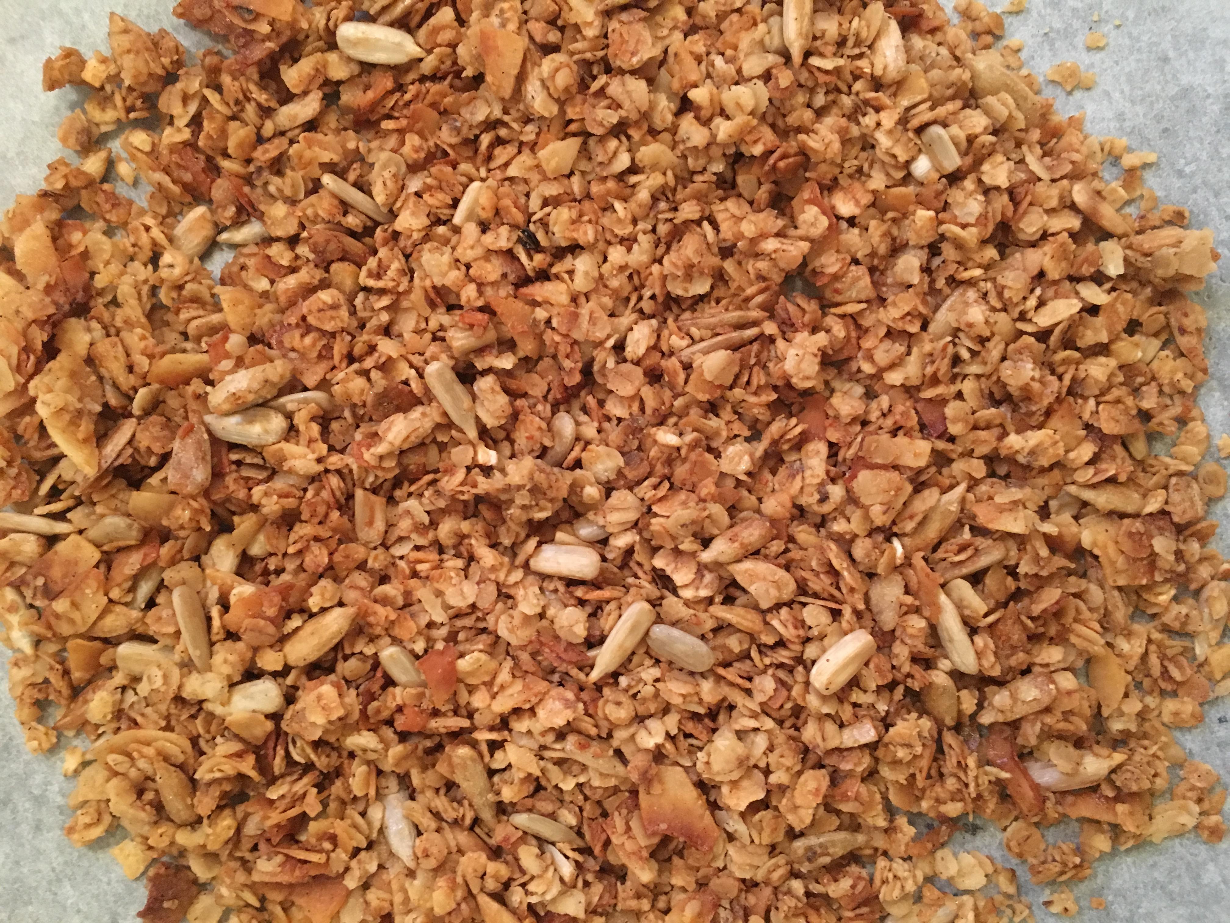 nasende kokos müsli - glutenfri